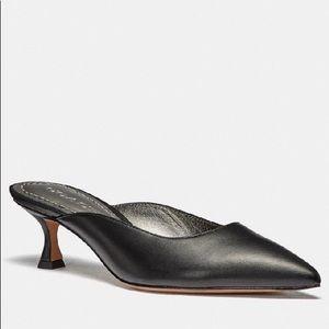 🆕 BNWT - COACH Kailee Mule Size 5.5